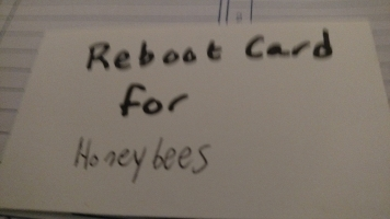 Front of Reboot Card: Reboot Card for Honeybees